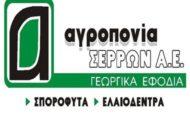 agroponia-serron-sa(380x330)