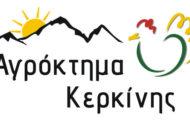 AGROKTIMA-KERKINIS-LOGO-COLORS